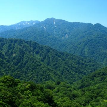 大阪のサプライズプロポーズ 白神山地