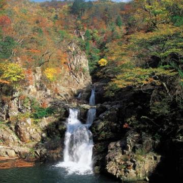 大阪のサプライズプロポーズ 三段峡