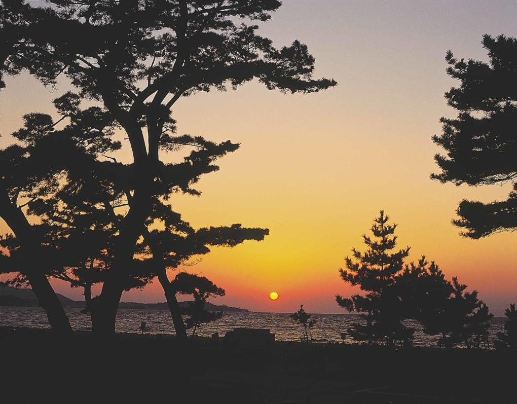淡路島でプロポーズするなら慶野松原海岸