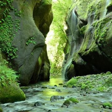 大阪のサプライズプロポーズ 由布川峡谷