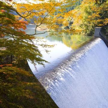 大阪のサプライズプロポーズ 白水ダム