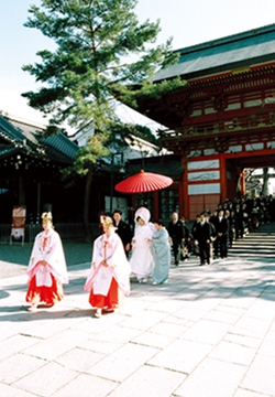 大阪のサプライズプロポーズ 八坂神社 常磐新殿