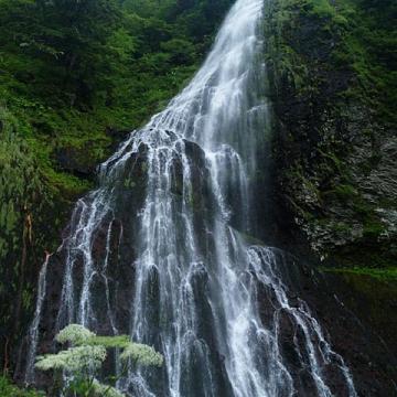 大阪のサプライズプロポーズ 百間滝