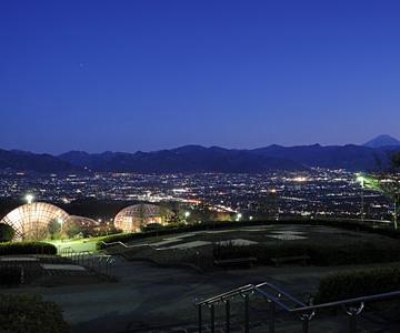 大阪のサプライズプロポーズ 笛吹川フルーツ公園