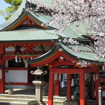 大阪のサプライズプロポーズ 奈加美神社