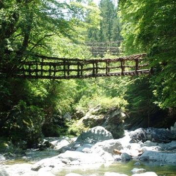 大阪のサプライズプロポーズ 奥祖谷二重かずら橋