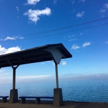 大阪のサプライズプロポーズ 下灘駅